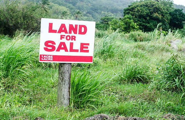 Covid-19: Land prices fall, rental income expected to decline
